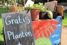 weggeefactie, planten en zaden!
